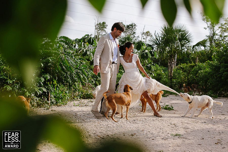 stray dogs Citlalli-Rico-Fearless-Photographers-Awards-Weddings-Mexico-001