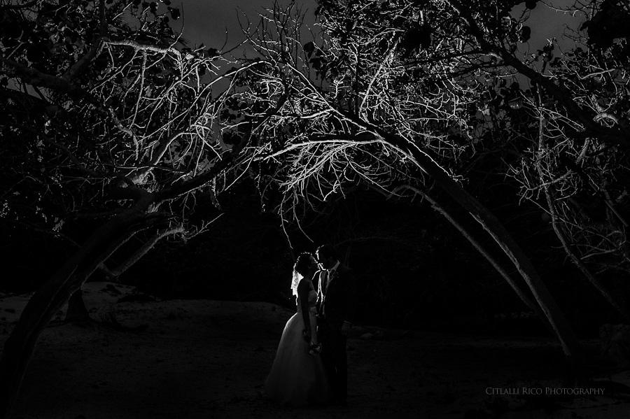 Bride and groom portrait branches silhouettes Lola y Bobby Ana Y Jose Tulum Mexico Wedding