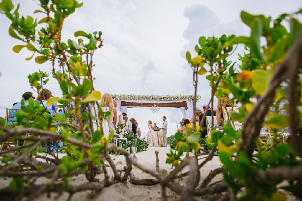 Beach ceremony through branches